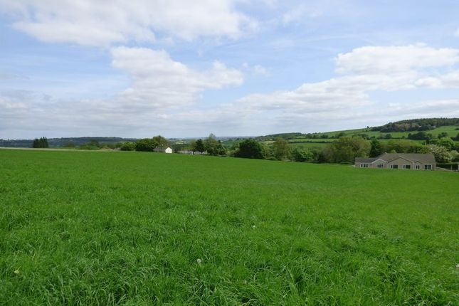 Photo 2 of Land At Troway, Marsh Lane, Sheffield S21