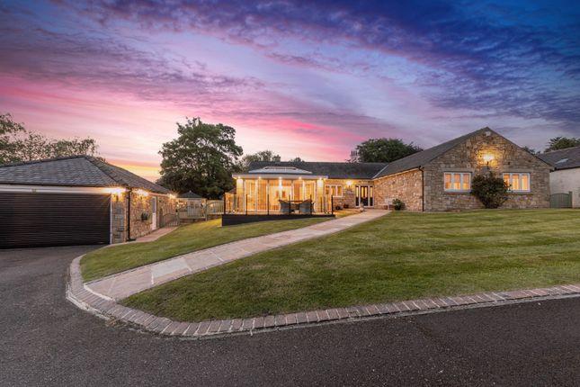 Thumbnail Detached bungalow for sale in Amberley, Hippingstones Lane, Corbridge, Northumberland