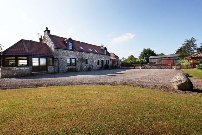 Thumbnail Detached house for sale in Whitehills Farm, Bogside, Alloa