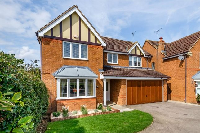 Thumbnail Detached house for sale in Meadow Sweet Road, Rushden