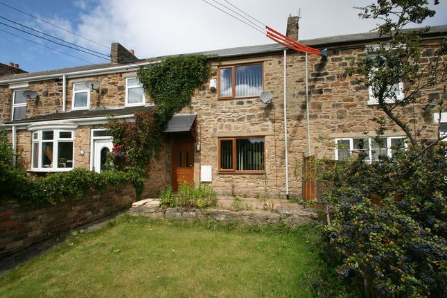 Thumbnail Cottage to rent in Hedley Hill Terrace, Waterhouses, County Durham