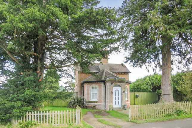 Thumbnail Property for sale in Hinton Martell, Wimborne