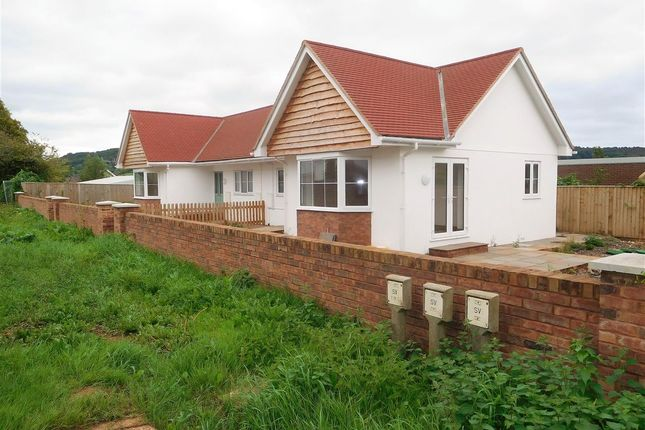 Thumbnail Bungalow for sale in New Bungalows, Manstone Lane, Sidmouth