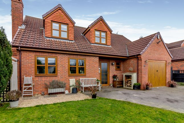 Thumbnail Detached house for sale in Lilac Grove, Nottingham