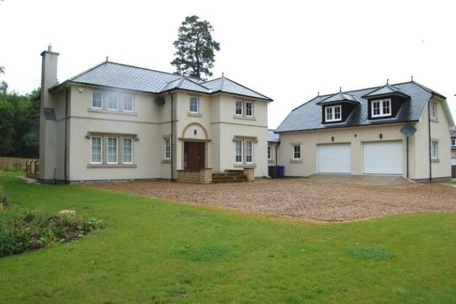 Thumbnail Detached house to rent in Mar Hall Avenue, Bishopton