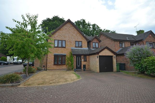 Thumbnail Detached house for sale in Tenby Road, Frimley, Surrey