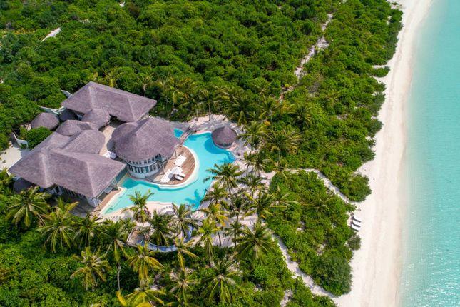 Image 36 of Medhufaru Island, Noonu Atoll, Maldives