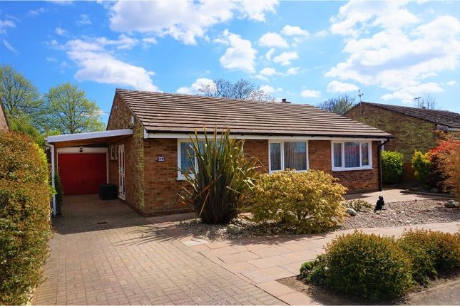 Thumbnail Detached bungalow for sale in Bowes Road, Colchester