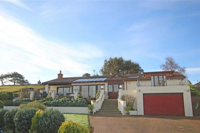 Thumbnail Detached bungalow for sale in Parkham Lane, Central Area, Brixham