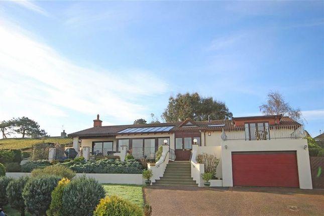 3 bed detached bungalow for sale in Parkham Lane, Central Area, Brixham