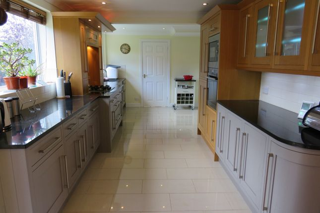 Thumbnail Detached house for sale in Horsegate, Deeping St. James, Peterborough