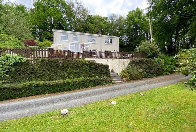 Thumbnail Detached house for sale in Bangor Teifi, Llandysul