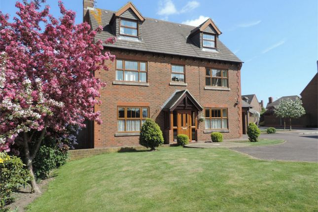 Thumbnail Detached house for sale in Hazel Grove, Bexhill On Sea, East Sussex