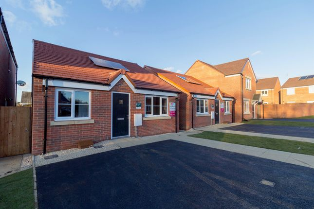 Thumbnail Detached bungalow for sale in Skippers Meadow, Narborough, King's Lynn
