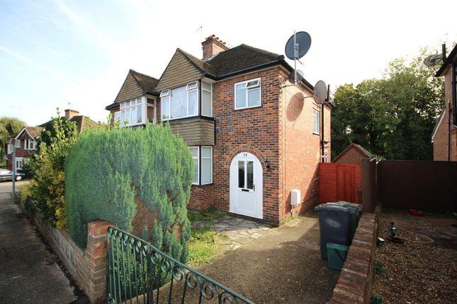 Thumbnail Semi-detached house to rent in Ash Grove, Guildford