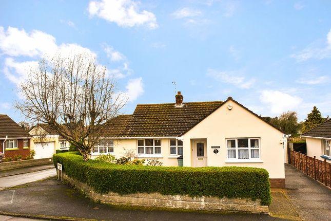 Thumbnail Detached bungalow for sale in 4 Bedroom Detached Bungalow, Beechwood Avenue, Barnstaple