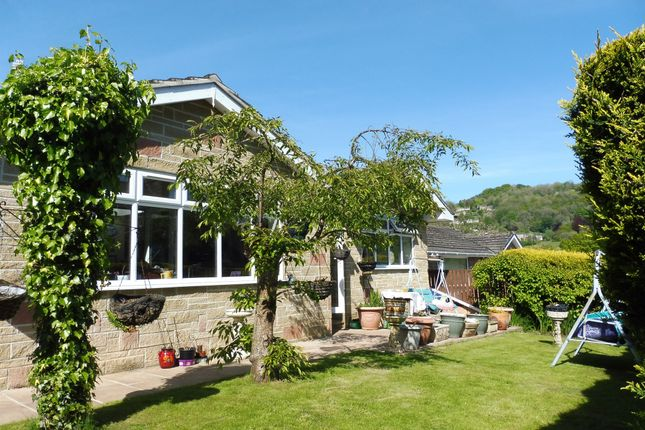 Thumbnail Detached bungalow for sale in Holme Road, Matlock Bath, Matlock