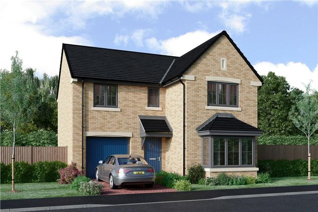 "Thumbnail Detached house for sale in ""The Seeger"" at Priory Gardens, Corbridge"