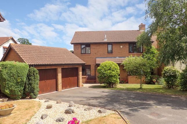 Thumbnail Detached house for sale in Hereford Close, Exmouth, Devon