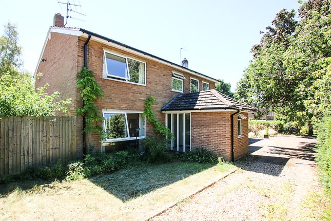 Thumbnail Detached house for sale in Brookside, Exning
