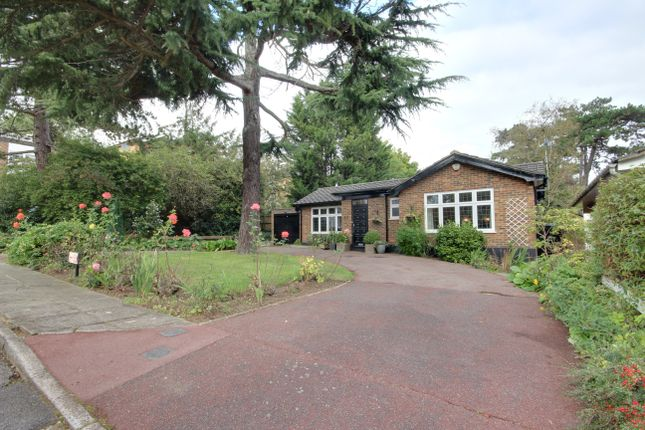 Thumbnail Detached bungalow for sale in Maplin Close, Winchmore Hill