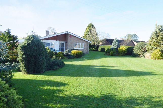 Thumbnail Detached bungalow for sale in The Street, Claxton