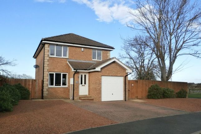 Thumbnail Detached house for sale in Field House Close, Acklington, Morpeth