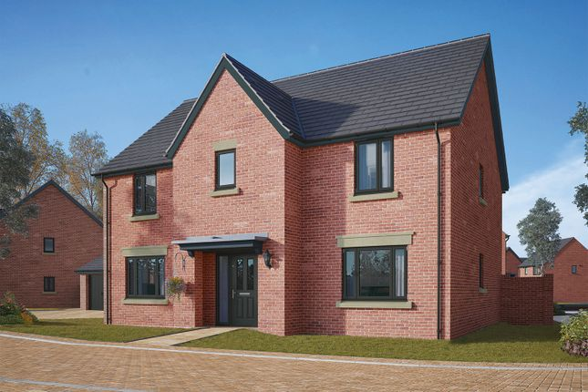 """Thumbnail Detached house for sale in """"The Wells"""" at Gidding Road, Sawtry, Huntingdon"""