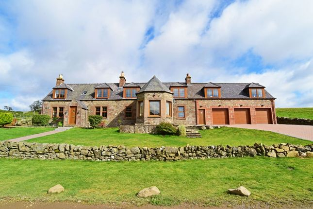 Thumbnail Detached house for sale in Wester Balintore Farm Cottage, Balintore, Kirriemuir