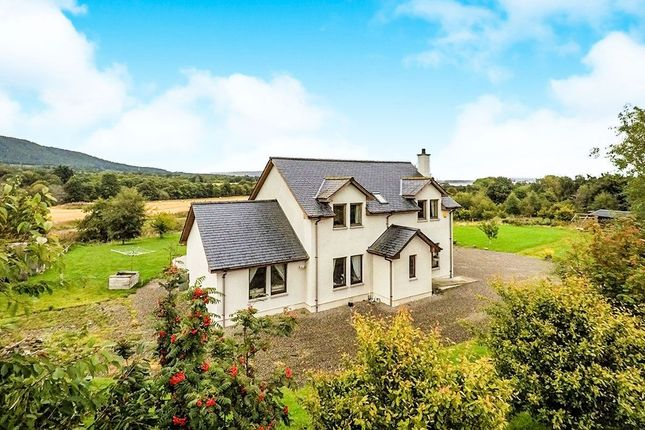Thumbnail Detached house for sale in Evanton, Dingwall