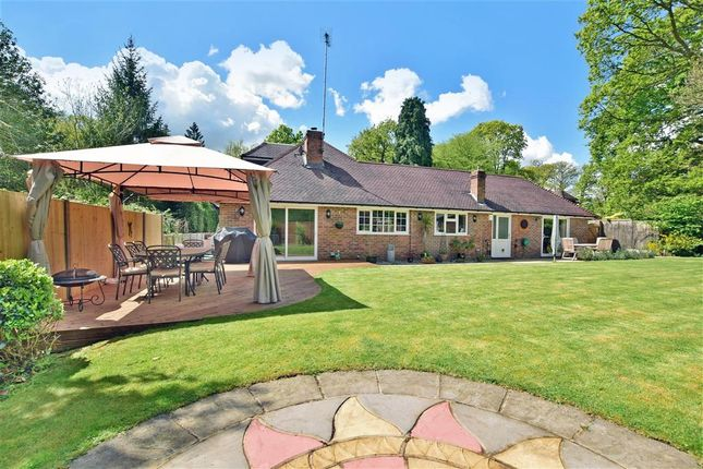 Thumbnail Bungalow for sale in The Ride, Ifold, Billingshurst, West Sussex