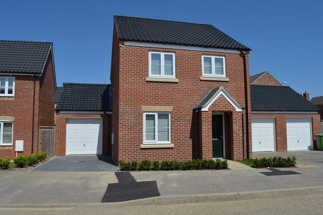 3 bed link-detached house to rent in The Pines, Cringleford, Norwich NR4
