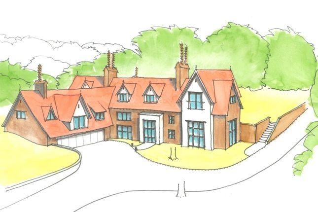 Thumbnail Land for sale in Mope Lane, Wickham Bishops, Witham