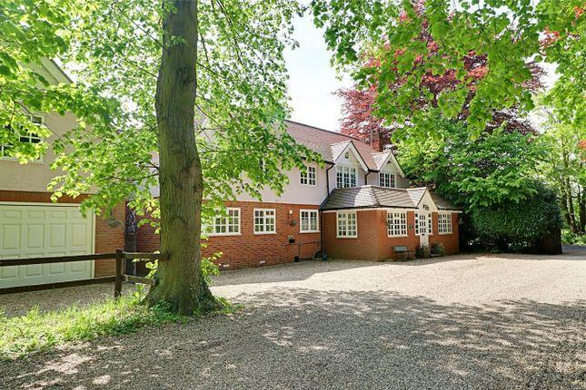 Thumbnail Detached house for sale in Sawbridgeworth Road, Little Hallingbury, Bishop's Stortford, Herts