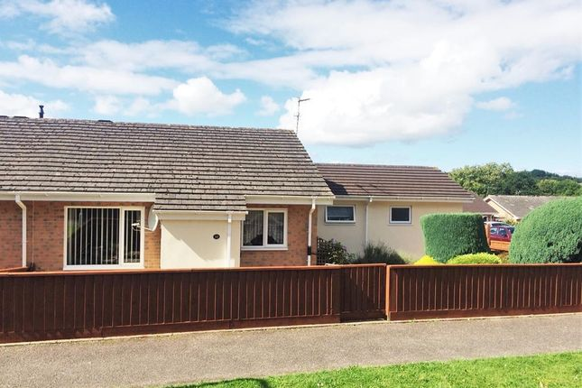 Thumbnail Bungalow to rent in Honiton Bottom Road, Honiton