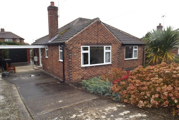 Thumbnail Bungalow to rent in Hill Top Crescent, Harrogate
