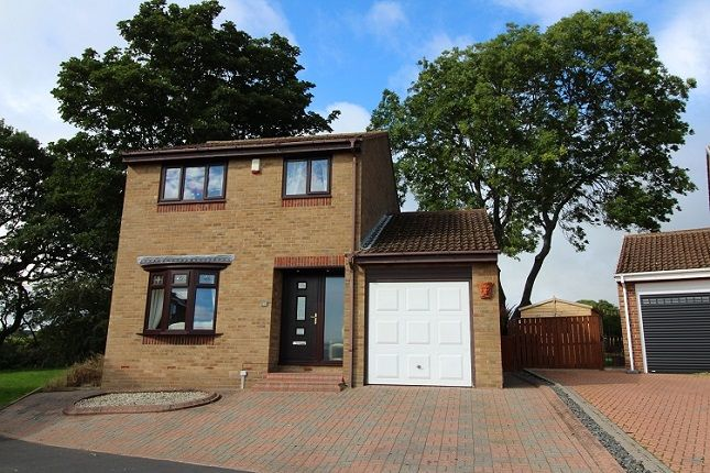 Thumbnail Detached house for sale in Woodburn, Tanfield Lea
