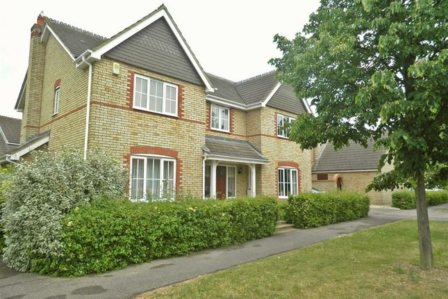 Thumbnail Detached house to rent in Heybridge Crescent, Caldecotte, Milton Keynes