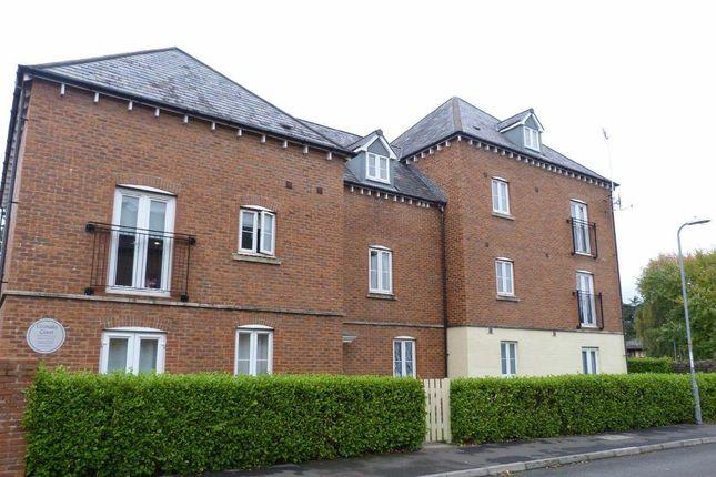 Thumbnail Property to rent in Granada Court, Jamaica Grove, Newport