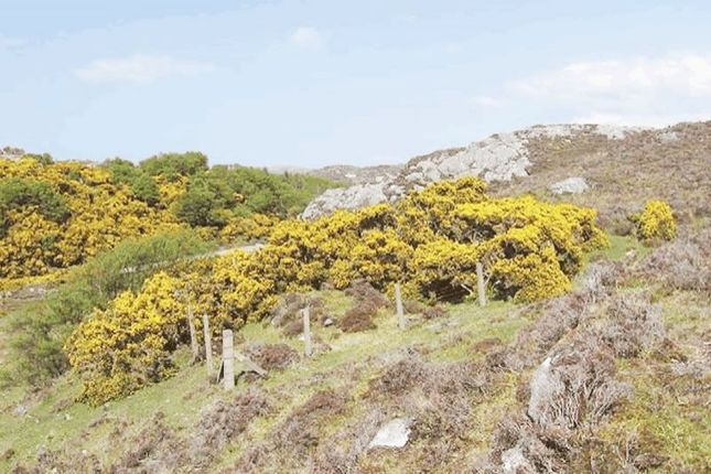 Thumbnail Land for sale in Strathan Dsr, Lochinver, Lairg IV274Lf