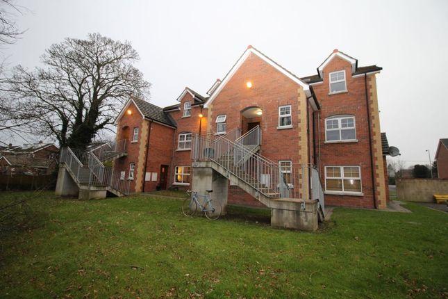 Thumbnail Flat to rent in Beechfield Mews, Lisburn
