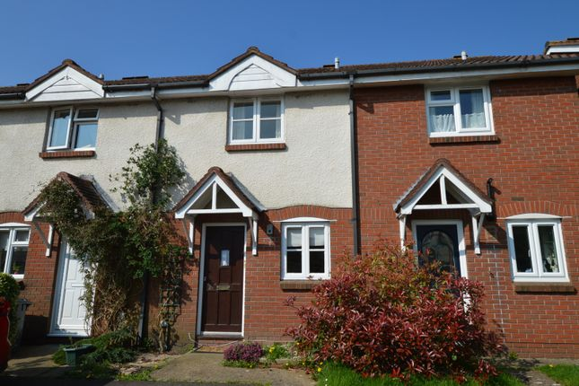 Thumbnail Property to rent in Stonechat Close, Petersfield