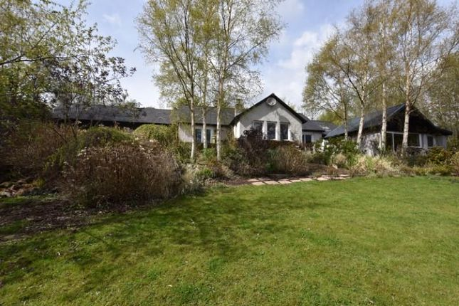 Thumbnail Detached house for sale in Kinnaird, Inchture, Perth