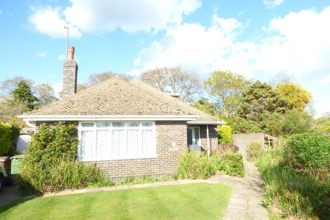 Thumbnail Detached bungalow to rent in Ravens Close, Bexhill-On-Sea