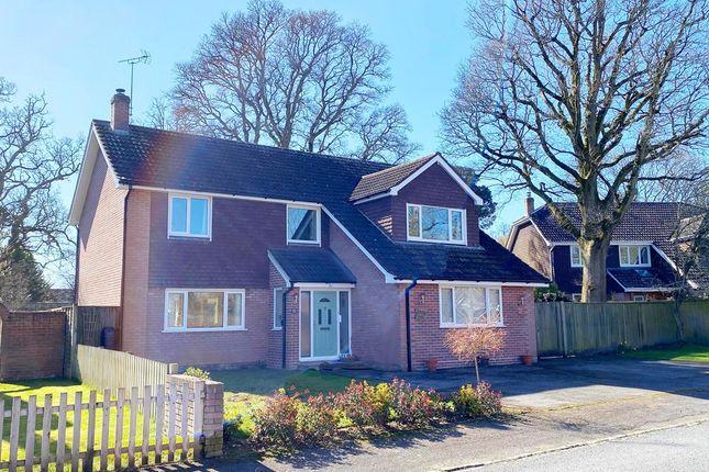 Thumbnail Detached house for sale in New Forest Drive, Brockenhurst