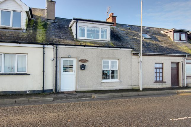 Thumbnail Terraced house for sale in Harbour Road, Ballyhalbert