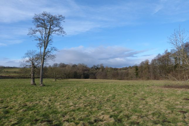 Thumbnail Land for sale in Guyzance, Northumberland