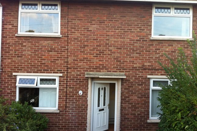 Thumbnail Semi-detached house to rent in Calthorpe Road, Norwich
