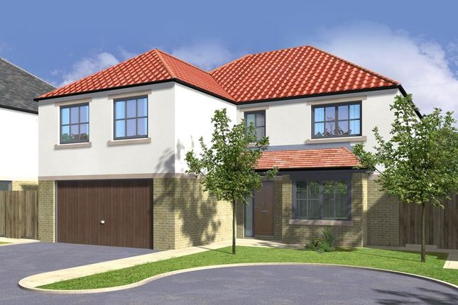 Thumbnail Detached house for sale in Swale House, Tadcaster Mews, Copmanthorpe