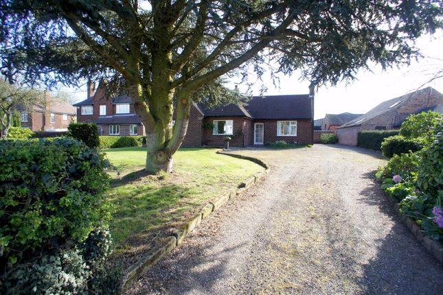Thumbnail Bungalow to rent in Cole Lane, Ockbrook, Derby
